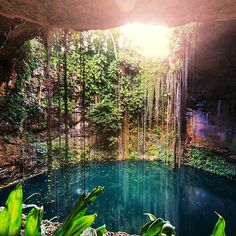 If a morning hike through the jungle and then a warm swim in the #cenotes of Mexico sounds like a good 2017 travel goal tap the link in our bio and Travel Well #TravelFly with us in June!