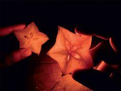 Christmas Star | @FairMail - Fair Trade Cards - CD393-E | Light, Hands, Darkness