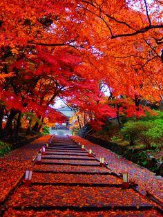 Bishamon-do, Kyoto