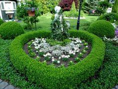 ...in unserem kleinen Paradies ...... wir freuen uns auf Euch, der Garten ist durch die vielen Immergrünen und Formgehölze das ganze Jahr attraktiv ! Neu: Eigene Homepage:  www.gartendiamant.de