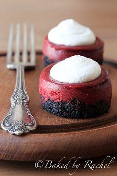 Mini Red Velvet Cheesecake Recipe - bakedbyrachel.com