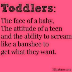 Toddlers: The face of a baby, the attitude of a teen, and the ability to scream like a banshee to get what they want.