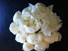 Peony bridal bouquet. By Pauline's Bloomers