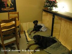 DIY murphy dog beds 010