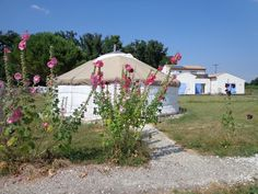 La Grande Yourte Ethnique de l'extérieur, ns roses trémières et notre maison bioclimatique à l'arrière, où le petit-déjeuner est servi.
