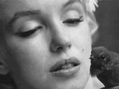 Marilyn... @rt&misi@.