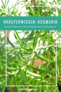 Alles wissenswerte über Rosmarin als Heilkraut!