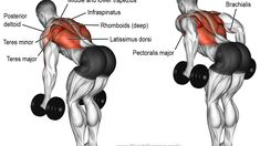 Bent-over two-arm dumbbell row exercise