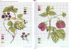 Gallery.ru / Фото #7 - Herbarium — Льняные травки - Mosca