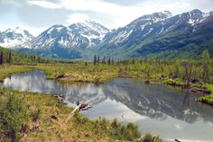 Travel   Alaska   Attractions   Things To Do   Free Things   Hidden Gems   Adventure   Towns     Road Trips   Last Frontier   Natural Beauty   Hiking   Day Trips   Alaska Itineraries   Bucket List   Train Travel   Fishing   Boat Travel   Car Travel   Alaska Photography   Wildlife Viewing   The Alaska Life   Only In Alaska   Alaska Weather   Alaska Beaches   Ocean   Rivers   Alaska Lifestyle   Mountains   Glaciers   History   Off The Grid   Anchorage