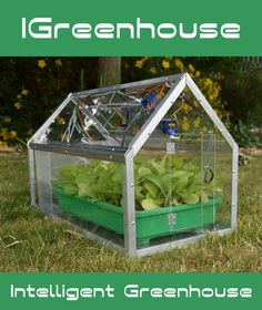 This greenhouse will automatically open and close his windows and door when it's too hot or too cold. When the plants are to dry, the smart greenhouse will automatically water your plants.