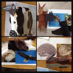Inquiring Minds: Mrs. Myers' Kindergarten: Animals in Winter: The Project- Part 2