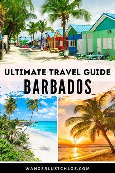 Trip To Barbados, Visit Barbados, Barbados Travel, Barbados Beaches, Caribbean Vacations, Ultimate Travel, Bridgetown, Snorkeling, Scuba Diving