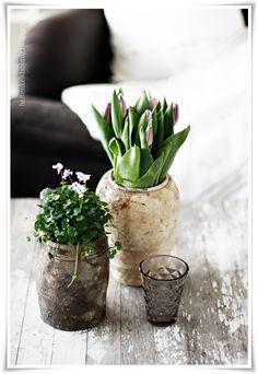 bloemen - styling - sfeer