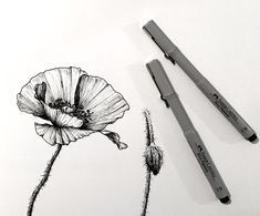 How to Draw Beautiful Floral Art with Pens Flower Art Drawing, Flower Drawing Tutorials, Pencil Drawings Of Flowers, Floral Drawing, Outline Drawings, Pencil Art Drawings, Art Drawings Sketches, Art Tutorials, Draw Flowers