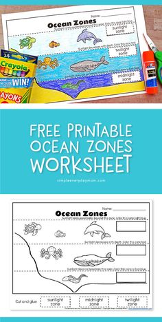 , Ocean Zones For Kids: Learning About The Amazing Ocean , Free Printable Ocean Zones Worksheet Preschool Lessons, Kindergarten Worksheets, Science Lessons, Kindergarten Activities, Science Activities, Preschool Ocean Activities, Camping Activities, Swimmy Leo Lionni, Layers Of The Ocean