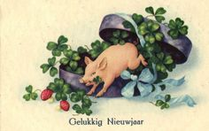 Pig Comes Out of Box Mushrooms Clover Happy New Year Postcard CA 1930'S | eBay