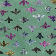 Dreamer Save the Bees Turquoise - Windham fabrics