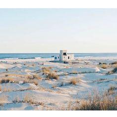 #CaboPolonio #Rocha  #Uruguay #somewhereiwouldliketolive #somewhereiwouldliketogo regran @cabinsandcabinsandcabins