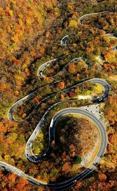 Tail of the dragon, 318 curves in 11 miles. Robbinsville, NC.