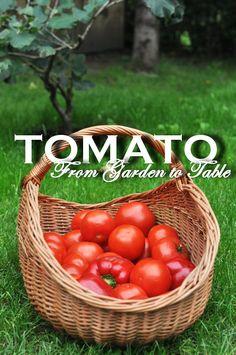 Food & Photography by Zosia Cudny Nasu, Food Photography, Vegetables, Garden, Garten, Lawn And Garden, Vegetable Recipes, Gardens, Gardening