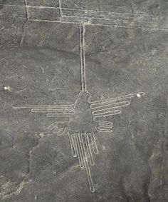 Nazca lines Peru Went there, did that. Plane ride to look at figures only visible from the air. Aliens And Ufos, Ancient Aliens, Ancient Art, Ancient History, Nazca Lines Peru, Nazca Peru, Fresco, Ancient Discoveries, Tempera