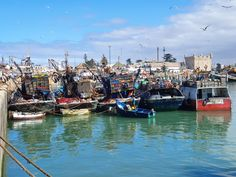 Boats from Essaouira Port Day Tours, Marrakech, Boats, Ships, Boat, Ship