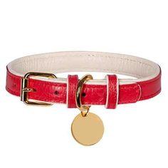 boy dog collar girl dog collar grey swirls Dog collar