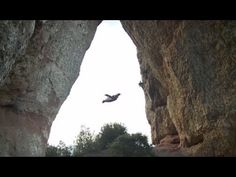 """Alexander Polli does the never before done—a tactical flight through a narrow cave on a rugged mountainside. The flight starts with a jump from a hovering helicopter, Alexander reaches speeds of 250 km/h (155 mph) while following a precise trajectory leading to the cave opening, he then fully commits and flies directly through the narrow opening of the """"Batman Cave!"""" Awesome!"""