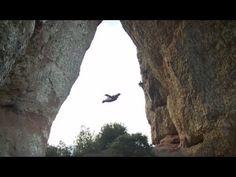 Unbelievable Wingsuit Cave Flight! Batman Cave, Alexander Polli, via YouTube.