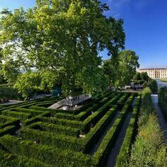 Maze at Schönbrunn Castle, Vienna Lavender Garden, Green Garden, Wild Flower Meadow, Wild Flowers, Adventure Farm, Labyrinth Maze, Evergreen Hedge, Heart Of Europe, Family Days Out