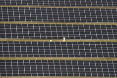 New material is said to be cheaper and easier to manufacture than current solar cells.