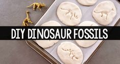 Dinosaur fossils made with salt dough. Learn how to make dinosaur fossils with this easy DIY recipe that includes pictures and step-by-step directions. Perfect for preschool!