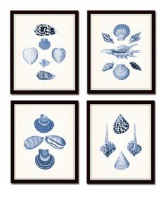 Blue Seashell Print Set No. 1, Antique Shell Prints, Print Set, Canvas Art, Coastal Art, Illustration, Seashell Prints, Wall Art, Nautical
