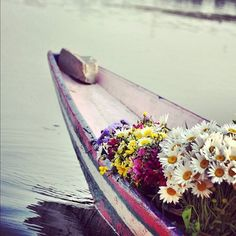 A heartwarming conversation with a rug seller from Kashmir, made me nostalgic for the day and the night I had spent in Srinagar a few years back, and the incredible road trip to Ladakh that followed. This is one of my favorite pics from that life altering trip.  #FlowerSeller #OnABoat #FloatingShop #CalmWaters  #Srinagar #NaginLake #BoatRide #Shikara #Kashmir #Ladakh #ThatTrip #Himalayas #MountainLonging #Craftsmen #Connections #Serendipity #Travel #RoadTrips #Wanderlust #PlacesIHaveBeen…