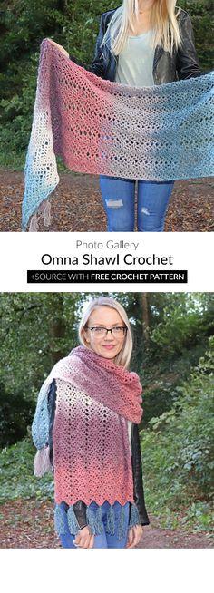 3f7cf19d92d35 Omna Shawl Free Crochet Pattern