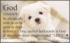 For Pepper 1 & 2, Cookie, Freant, Snuffy 1 & 2, Rolley, Freckles, and Layla...all good dogs go to Heaven.