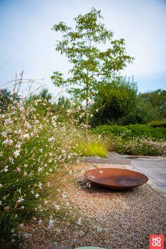 Precious Tips for Outdoor Gardens - Modern Backyard Patio, Backyard Landscaping, Back Gardens, Outdoor Gardens, Landscape Design, Garden Design, Garden Architecture, Real Plants, Garden Planning