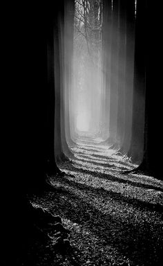 Le corridor de mon pére, by Bart Deburgh. https://500px.com/photo/29137331/le-corridor-de-mon-p%C3%A9re-by-bart-deburgh?ctx_page=2&from=user&user_id=180061