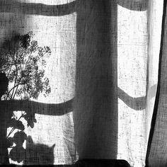 #curtains