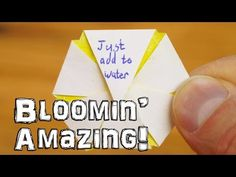 Dave Hax created a video tutorial on how to make custom blooming paper flowers that open up when you add them to water. Fun craft idea to do with kids. You could leave a Valentines message inside and surprise a loved one. Be amazed as you watch it open by Water Bottle Crafts, Water Crafts, Fun Crafts, Art And Craft Flowers, Valentine Messages, Open When, Wonderful Flowers, Water Flowers, Recycled Bottles