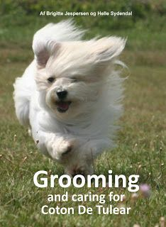 """""""Grooming and caring for Coton De Tulear,"""" by Brigitte Jespersen."""