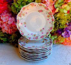 9 Beautiful Vintage Austrian Porcelain Plates ~ Roses ~ Floral #RegionAustria