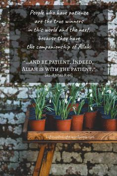 Allah SWT tells us in the Qur'an, that as a matter of fact, we will certainly be tested. Every person will be tested in some capacity. Some are not tested with their health, but with their family. …
