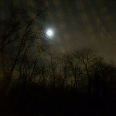 Full Moon Outside My Bedroom Window - Gemini December 17, 2013