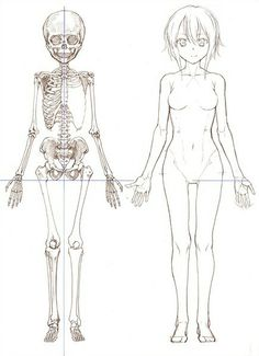 Girl, front body and skeleton reference.