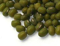 Soja Vert