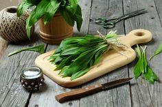 Cooking with Wild Garlic Wild Garlic, Kraut, Ricotta, Preserves, Smoothies, Yummy Food, Delicious Meals, Vegetarian, Herbs