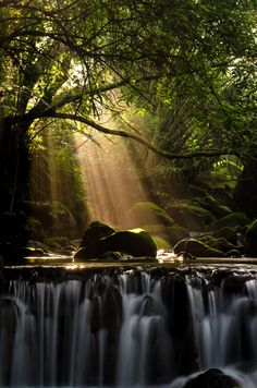 """Beautiful waterfall in the forest with God rays of light. Photo """"Light"""" by Jackie Yeh. Beautiful World, Beautiful Places, Beautiful Pictures, Beautiful Waterfalls, Beautiful Landscapes, Photo Pose Longue, Dame Nature, Belleza Natural, Amazing Nature"""