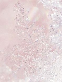 Christmas is. Pink Wallpaper, Wallpaper Backgrounds, Iphone Wallpaper, Winter Backgrounds, Frozen Wallpaper, Snow Activities, Pink Sugar, Winter Beauty, Everything Pink